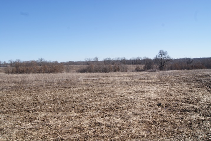 CALLAWAY COUNTY LAND AUCTION – 63 ACRES (+/-)