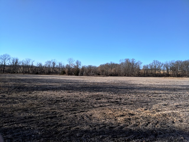 55 ACRES (M/L) EAST OF CR 1250, HUNTSVILLE, MO